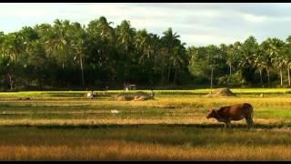 Die neuen Paradise: Philippinen Unbekannter Archipel