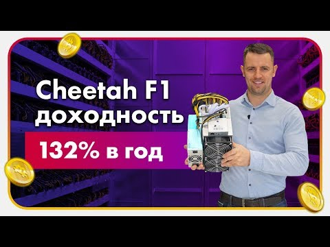 Обзор Cheetah F1 Доходность 132%