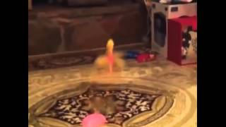Barbie Puppe Fliegt in den Kamin