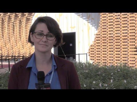 COP22: John Kerry fails to calm fears Trump will end UN climate agenda