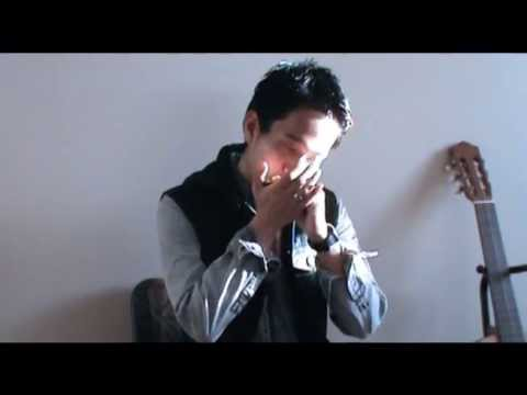 Danny boy (harmonica cover) - YouTube
