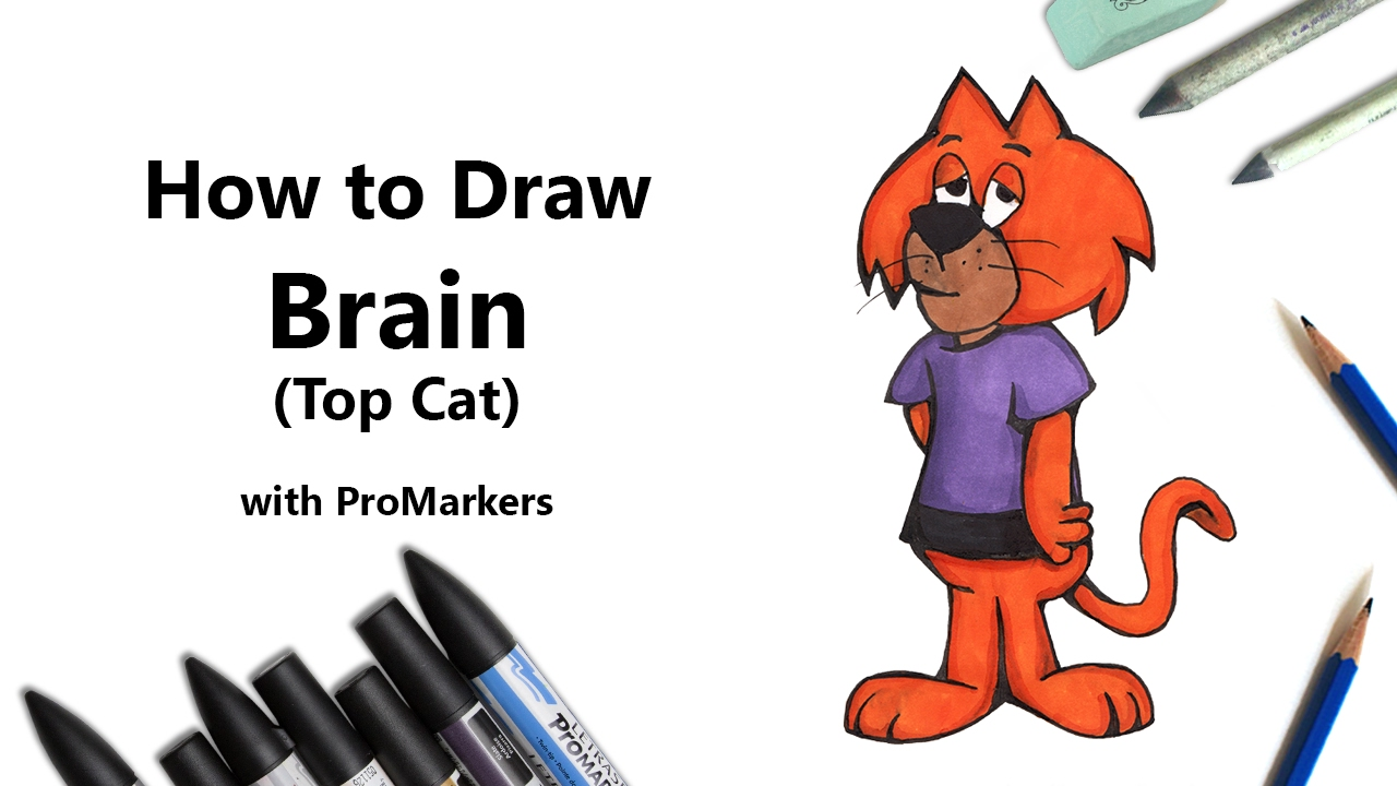 How to Draw and Color Brain from Top Cat with ProMarkers ...