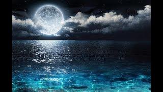 🔴 Relaxing Sleep Music 24/7: Deep Sleep, Relaxing Music, Meditation Music, Beautiful Music