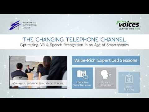 The Changing Telephone Channel: Enterprise Integration Group and GM Voices