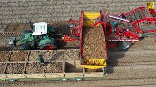 Kartoffelernte 2019 in Niedersachsen - Einblick in den Betriebsablauf - Potato harvest in Germany 4K