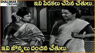 Savitri Best Comedy Scenes Back to Back || Telugu Latest Movies Scenes || Shalimarcinema