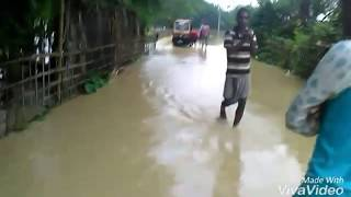 Flood Assam Hailakandi Dist. Barak velly