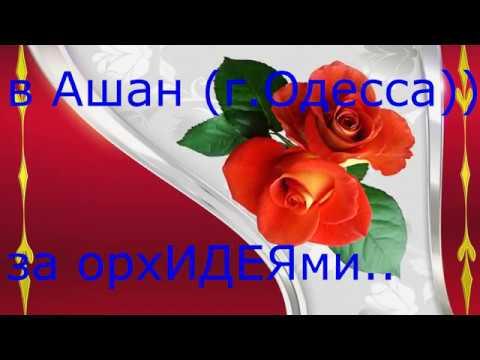 в Ашан г Одесса за орхидеями