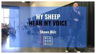Shawn Bolz: My Sheep Hear My Voice