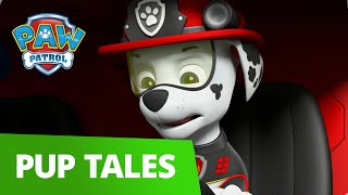 PAW Patrol | Pup Tales #50 | Rescue Episode!