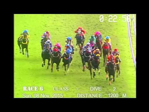 ม้าแข่งสนามฝรั่ง อา.ที่8 พย. 2558 เที่ยว 6
