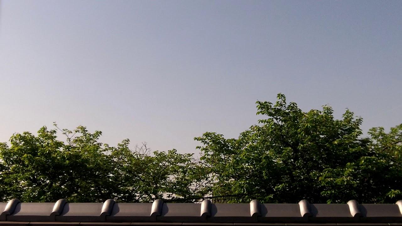 Sunny Day Saturday - YouTube