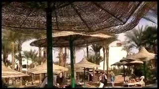 N-19 пляж SONESTA BEACH RESORT & CASINO. Египет город Шарм Эль Шейх.