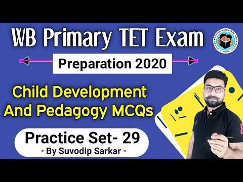 primary-tet-exam-preparation-2019-|-child-development-and-pedagogy-|-class-29-|-wb-tet-exam-2019