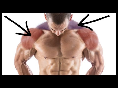 The Key To A Wide And Powerful Looking Upper Body Youtube
