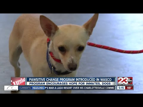 Marley's Mutts spreading Pawsitive Change program to Wasco State Prison