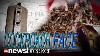 COCKROACH FACE: China Bringing in Big Bucks Selling Cockroaches to Cosmetic Companies