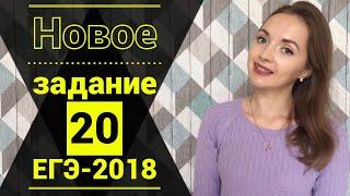 НОВОЕ задание №20 ЕГЭ-2018 по русскому языку [IrishU]