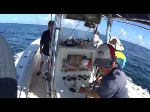 Gag Grouper Charter Fishing. Saint George Island. 개그구루퍼 마수걸이. 피빼기.  방게  애인낚