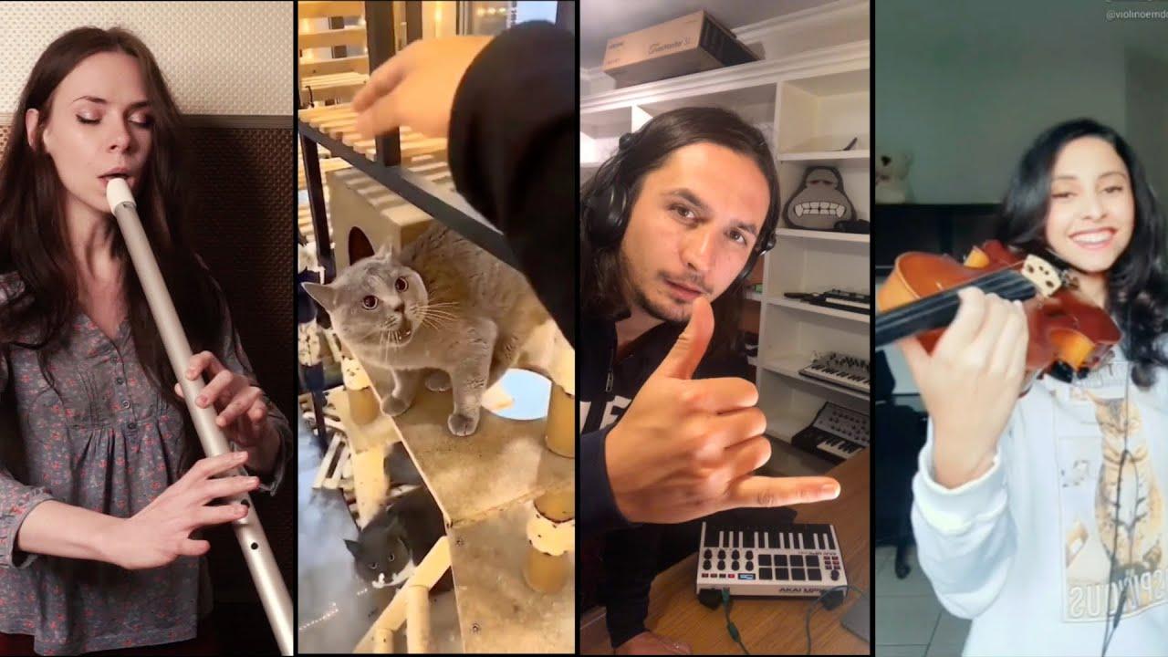 The Kiffness - Alugalug Cat (International Symphonic Mashup)