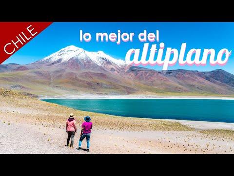 La Falta De Oxígeno Nos Pone Así // Calama Y San Pedro De Atacama, Chile