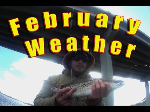 "Jacksonville Fishing Trips, in ""die hard"" February"