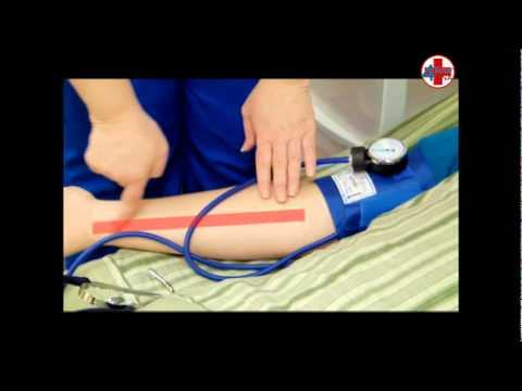 how to take blood pressure with cuff/stethoscope