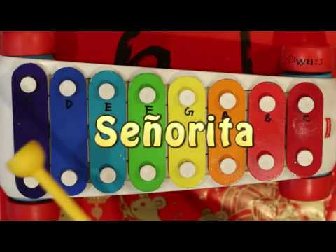 How To Play Señorita On A Fisher Price Toy Xylophone | Wu23 Music