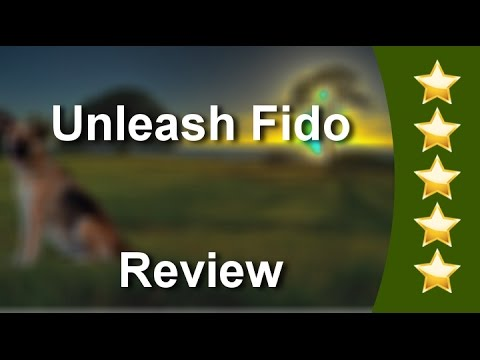 Jacksonville Beach, Florida Dog Trainer Expert & Puppy Training Services  | Unleash Fido