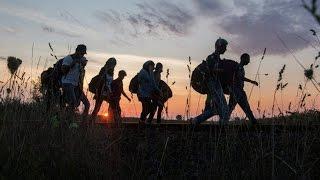 В Венгрии задержаны 16 мигрантов за незаконное пересечение границы. Новости 15 сен 02:14(, 2015-09-18T01:23:39.000Z)