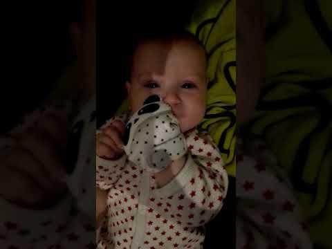 Baby talking to panda glove