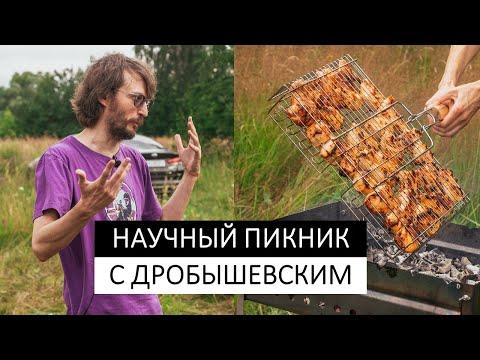 Научный пикник с Дробышевским. В чем секрет развитых обществ