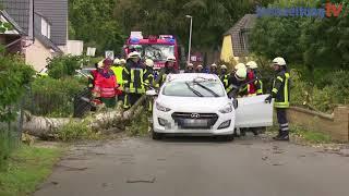 Sturmtief Sebastian: Baum stürzt in Leeste auf Auto