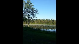 Timberline Lake Camping Resort 2018