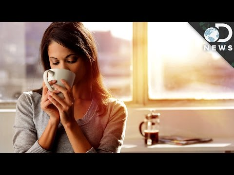 Download Youtube: Why It's Better To Be A Morning Person