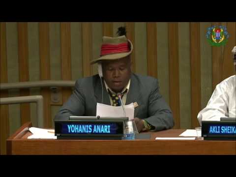Intervention in United Nation by WPLO