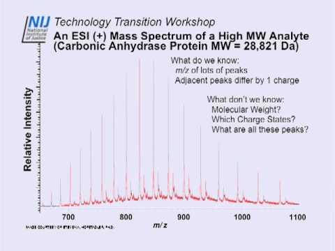 IBIS 2009 : 01 : Mass Spectrometry