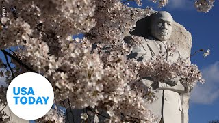 Biden and Harris speak at anniversary of the Martin Luther King, Jr. Memorial | USA TODAY