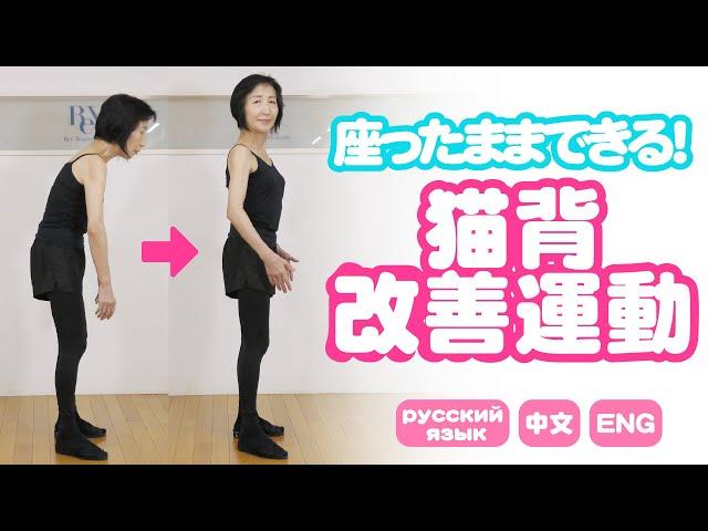 簡単【猫背改善 体操】姿勢が良くなる!座ったまま出来る!