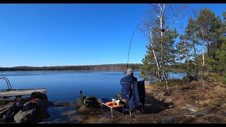 Фидерная рыбалка в заповедном озере 1 ый день