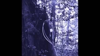 Roman Poncet - Black Orchid
