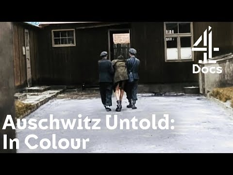 auschwitz-untold:-in-colour-|-what-happened-right-before-jewish-concentration-camps-were-liberated?