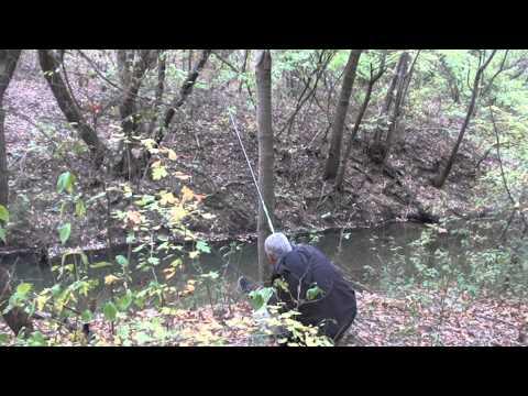 Pescuit clean la pipait pe riul Teleorman