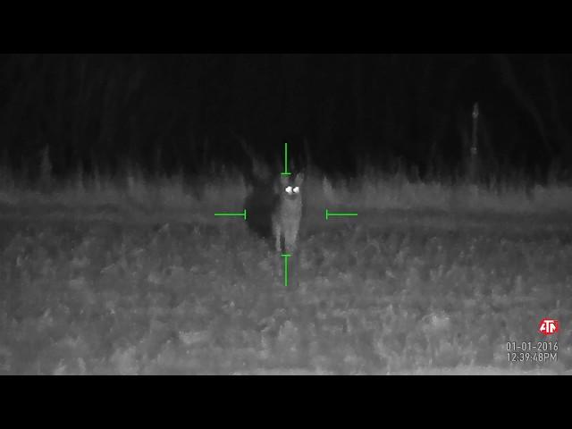 NightSnipe Hunting Lights NS550 IR Illuminator Compilation