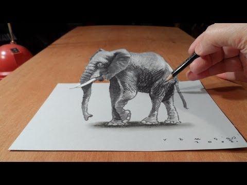 Drawing Elephant, How to Draw 3D Elephant on Paper
