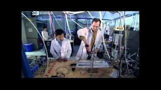 Наука и техника  Что строят животные   Discovery HD