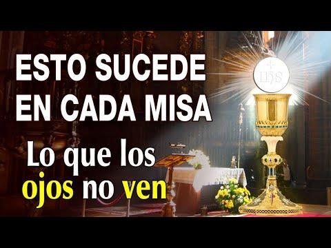 Download ESTO SUCEDE EN CADA MISA. Lo que los ojos no ven y los ángeles sí   Buenas noches con María