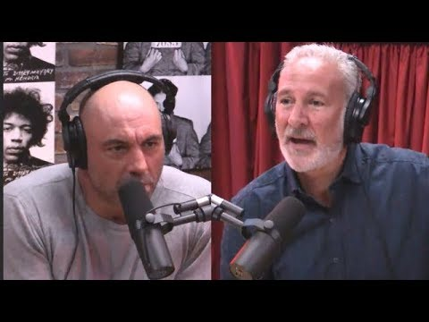 Joe Rogan & Peter Schiff on Minimum Wage