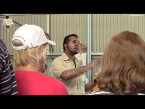 Australian Age of Dinosaurs Preparator/Technician, Tour Guide