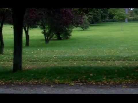 Chateau de Versailles Park